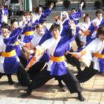 踊り子魂 百まで!ユニバーサルソーラン「斬桐舞」