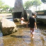 公園巡りのすすめ!つくばの避暑地?!「並木公園」