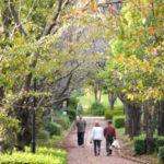 お散歩日和♪ペデストリアンデッキをのんびり散策