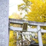 厳かな空気に癒やされる!「金村別雷神社」