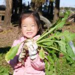 野菜を100%感じる収穫体験!