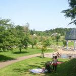 夏休みにおすすめ水遊びスポット!「福岡堰さくら公園」