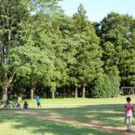 守谷の公園巡り(北園森林公園と守谷城址公園)