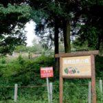 鳥がさえずり 森がささやく 「高崎自然の森」