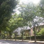 豊かな自然と快適環境!子育てに優しい街「豊里の杜」