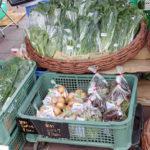 地元のこだわり野菜を食べて、学んで、つながろう「野菜。知るCafe」