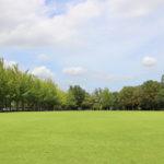 秋のピクニックにおすすめ♪TX沿線の芝生広場が気持ちいい公園