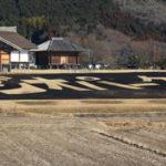 平沢官衙遺跡の芝焼きに行ってきました