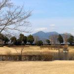 穴場の桜スポット!筑波北部緑地