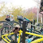 「ゆけゆけ乙女のつくば道」筑波山麓自転車ツアーで暮らすように遊ぶ