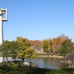展望塔から360度の大パノラマが楽しめる「松見公園」