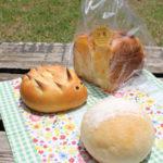 松代公園へパンを持ってピクニック♪ 「Boulangerie nico」