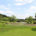 家族でのおでかけにオススメ!「川口公園」「台山公園」