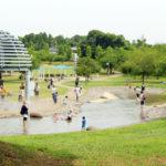 水遊びデビューにぴったり♪ 「福岡堰さくら公園」