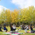 半年に一回のお楽しみ♪つくばの公園でピラティス×ヨガのコラボイベント