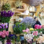 人に、花に会いに行きたくなる花屋「花ブンブン」