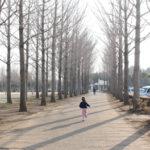 つくば市「科学万博記念公園」で春を探そう♪