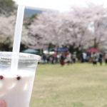 行ってみたかったお店に出合えるマーケット~春爛漫の「つくいち」へ!~
