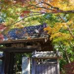 大人女子の心を癒やす♪ 筑波山麓 紅葉のお寺めぐり