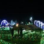 筑波山のすそ野に広がるイルミネーション!「茨城県フラワーパーク」