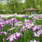親子でも楽しめる♪初夏の彩り豊かな「四季の里公園」へ