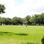 水と緑が心地よい空間「かつらぎ公園」