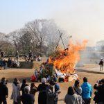 小田城跡で歴史探訪と伝統行事「どんど焼き」