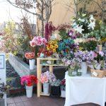 ライフスタイルにお花のスパイスを~Flower shop MajoraM~
