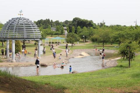 福岡堰さくら公園 水遊び