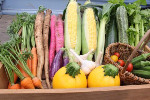 農産物の直売所では新鮮な野菜や採れたての卵などを買い求めることができます