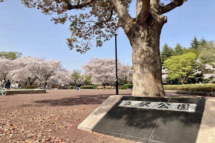 立沢公園(守谷市)