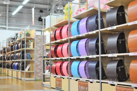 近年の人気の色は、王道の黒や紺、明るい紫、水色、ピンクとのこと。