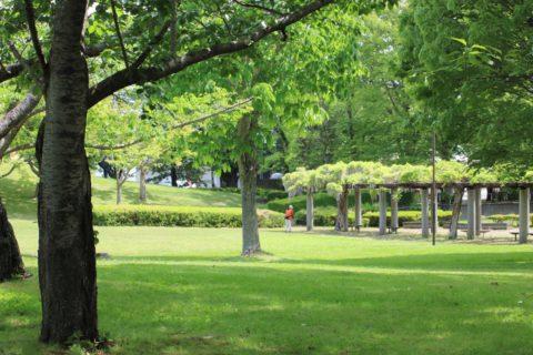 つくば市の天久保公園