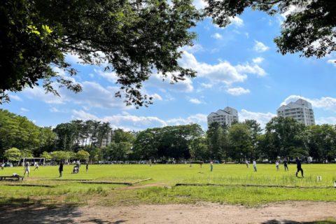 広々とした芝生の多目的広場