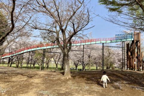 メリット3:周辺には伸び伸び遊べる公園がたくさん