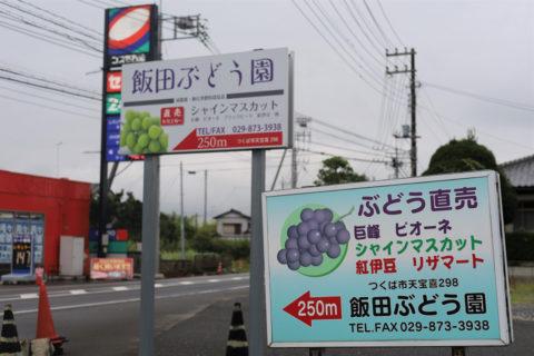 近隣はもちろん、他県から買い求めに来る人もいるほどファンの多いぶどう園です